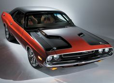 Dodge Charger that I'd look really cute in