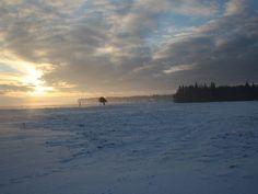 Die Nordseeinsel Amrum im Winter ist ein ganz besonderes Erlebnis.