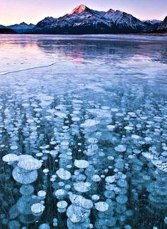 Frozen Air Bubbles, Abraham Lake, Canada
