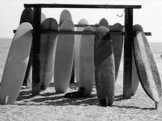 Dog Seeking Shade under Rack of Surfboards at San Onofre State Beach Photographic Print by Allan Grant at AllPosters.com