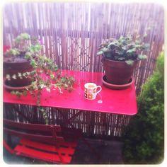#yogitea #orlakiely #terrasse #homesweethome #paris