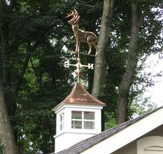 Do you have a cupola and weathervane on top of your shed? Choose from 100 styles and give your shed an upgrade! Metal Building Kits, Metal Building Homes, Metal Homes, Modern Colonial, Modern Rustic Homes, Shed Design, Garage Design, Barn Cupola, Steel Barns