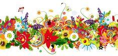 Parsley SimplyHerbs (Curled) | Bountiful Plants