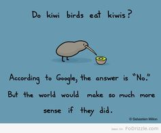 """""""Birds are just called Kiwi, the fruit is called Kiwifruit. In New Zealand anyway..(which where the Kiwi is from)"""" - My Kiwi (aka my smarty pants fiance)"""
