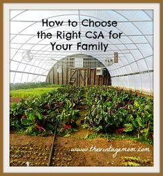 "How to Choose the Right CSA for You and Your Family - ""If you are lucky enough to live in an area with a number of choices for Community Supported Agriculture (CSA) shares and are wondering how to go about choosing the right one for you, this post is for you."""