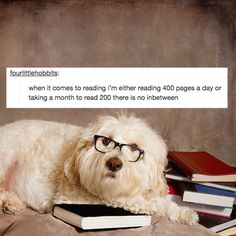 17 Tumblr Posts All Book Lovers Will Feel In Their Soul