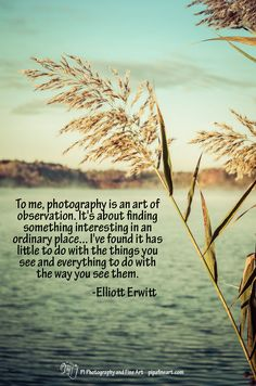 """""""To me, photography is an art of observation. It's about finding something interesting in an ordinary place... I've found it has little to do with the things you see and everything to do with the way you see them."""" - Elliott Erwitt  To download quotes on Nature and Landscape Photographs visit http://pipafineart.photoshelter.com/gallery/FREE-Life-Love-Quotes-on-Photos/G000014QDX6mYijc"""
