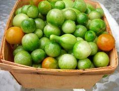 Pickled Green Cherry Tomato Recipe