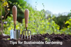 The right thing to do these days in your yard and garden is to practice sustainability. Here are some helpful tips for sustainable gardening.