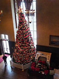 Casa Loma Christmas tree... give Clark Griswald a run for his money!