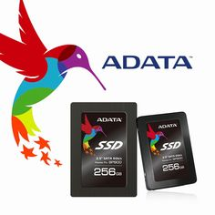 Find More Internal Solid State Disks(SSD) Information about ADATA SATA3 SSD Solid State Disk  2.5 Inch Laptop Notebook 256GB SP900 Authorization Seller,High Quality notebook business,China notebook cute Suppliers, Cheap notebook lock with alarm from ADATA on Aliexpress.com