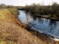 Jälgige meie loodusblogi. Klikkige pildile ja valige endale sobiv sotsiaalmeediakanal. Country Roads, River, Nature, Outdoor, Search, Outdoors, Naturaleza, Searching, Outdoor Games