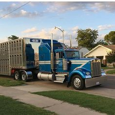 Kenworth classic W900A bull hauler