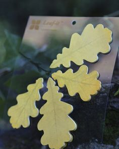 Oak leaf post-it notes. Too beautiful to use