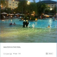 Always have a camera in case of Malfoys in the pool.   56 Life Lessons You Learned From John Green