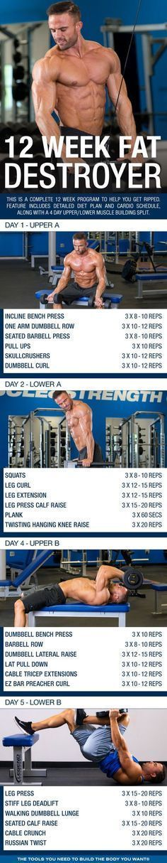 Arnold chest shoulders and abs exercise pinterest shoulder click through to download pdf this is a complete 12 week program to help you get ripped feature includes detailed diet plan and cardio schedule malvernweather Images