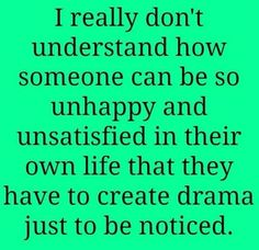 I really don't understand how someone can be so unhappy and unsatisfied in their own life that they have to create drama just to be noticed...