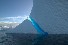 Want to dive Antarctica? Please contact Faith Ortins at DUI for more information: Faith@DUI-Online.com or 800-325-8439 x313.