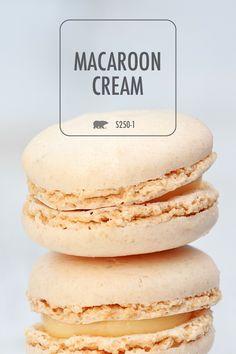 Macaroon Cream Behr Paint Colors