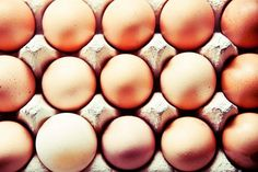 Should You Refrigerate Your Eggs? Here's the Final Answer We asked the USDA and the country's largest producer of the kitchen staple. This is what they said.  July 16, 2014 By Kristina Bravo Kristina Bravo is a Los Angeles–based writer. She is an Assistant Editor at TakePart.