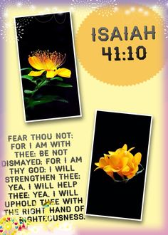 Isaiah 41:10 - Fear thou not; for I am with thee: be not dismayed; for I am thy God: I will strengthen thee; yea, I will help thee; yea, I will uphold thee with the right hand of my righteousness.