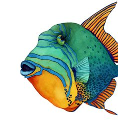 Fish Face: Queen Triggerfish, Michelle Nicole Lowe - Watercolor, Print on canvas (10in x 10in), Michelle Nicole Lowe