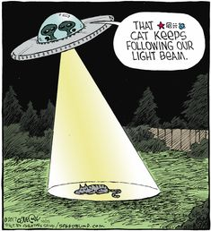 aliens and the cat - Speed Bump by Dave Coverly. Funny Cartoons, Funny Comics, Funny Animal Memes, Funny Memes, Hilarious, Speed Bump Comic, Grammar Jokes, Alien Aesthetic, Funny Postcards