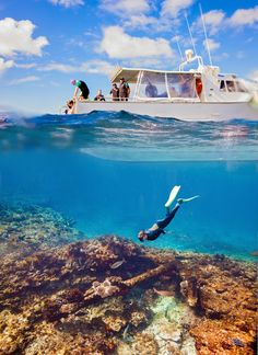 The Abrolhos Islands off the Coral Coast in Western Australia just made my Australian Bucket list!! Snorkelling the Batavia Shipwreck - Sarah Henderson Photography