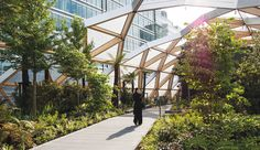 Foster + Partners Sails Into Canary Wharf - Azure Magazine