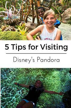 Disney's Pandora 201