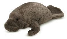 Classics plush capture the natural grandeur of sea animals  with fine craftsmanship. Cuddly and collectable Manatee.    Stuffed animals real and imagined abound within our fabulous  collections. Every piece of Ganz plush is crafted to be loved  and played with by kids of all ages.