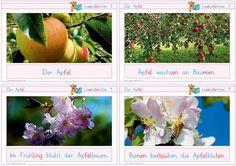 http://www.zaubereinmaleins.de/startseite/home..../