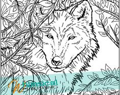 Realistic Wolf Coloring Pages Coloring Coloring Pages