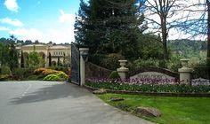 Ferrari Carano Winery Napa Sonoma, Sonoma County, California Wine, Northern California, My Happy Place, Wine Country, Family Travel, Wines, Vineyard