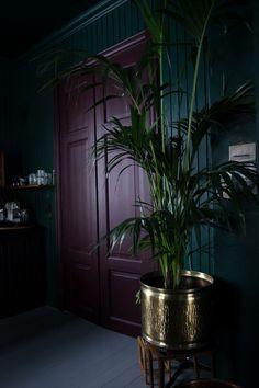 Best Glidden Interior Paint Colors for a Purple Bedroom Dark Purple Bedrooms, Bedroom Green, Purple Bedroom Decor, Goth Bedroom, Dark Interiors, Colorful Interiors, Deco Violet, Purple Interior, Dark Walls