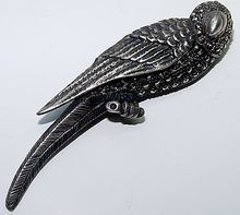 lovely sterling parrot