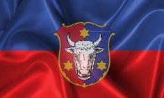 Heraldica Bucovinei 3D ~ Neculce.Info Net