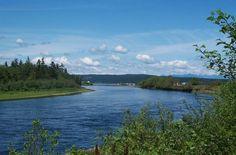 Campbell River estuary of our namesake heritage river. Visit the official Campbell River Tourism website at http://CampbellRiverTourism.com.