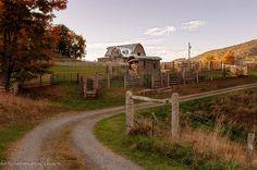The Horse Camp - Harman, WV - Photo by Denise Powers Fabian