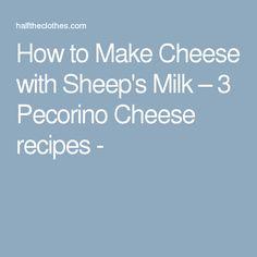 How to Make Cheese with Sheep's Milk – 3 Pecorino Cheese recipes -