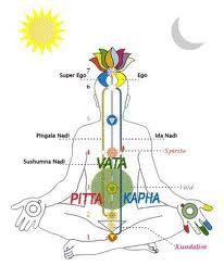 ayurveda is een levensvisie en gaat over veel meer dan alleen voeding. Ayurveda betekent letterlijk: de kennis van het leven. De van oorsprong Indiase levensstijl gaat over de totale gezondheid van je lichaam én geest. De elementen aarde, water, lucht, vuur en ether staan centraal en worden vertaald in drie dosha's (constituties): vata, pitta en kapha. Om in balans te blijven of te komen wordt het aangeraden om voedingsmiddelen te eten die passen bij je constitutie.