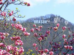 Villa Cristiani - Near Dino Parc Rasnov - Cristian Places To Travel, Places To See, Travel Around The World, Around The Worlds, Brasov Romania, Visit Romania, Travel List, Beautiful Landscapes, Beautiful Scenery