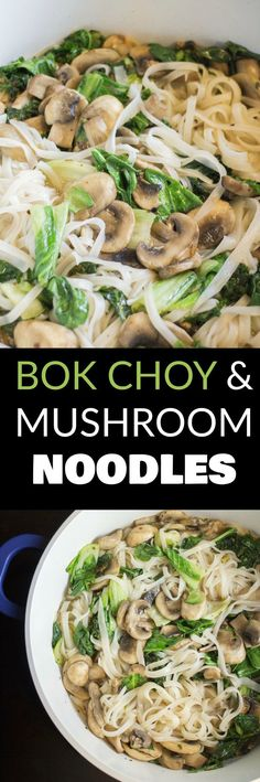 CHINESE Bok Choy and Mushroom Noodles is DELICIOUS! This healthy recipe is made in 15 minutes and makes Asian cooking easy! These noodles are vegetarian, spicy and simple! We love this dinner in our house!