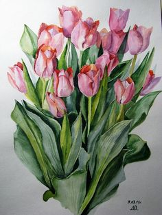 Watercolor Plants, Watercolor Artwork, Watercolor And Ink, Botanical Art, Flower Art, Flora, Drawings, Photos, Flower Decoration