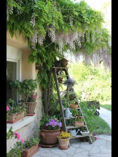 Lovely ladder detail in garden