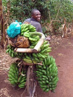Farmer transports bananas to market on a bicycle in Uganda | © 2006 Svetlana Edmeades/IFPRI