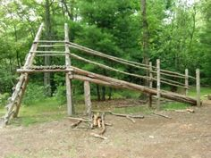 Natural Play Structure!