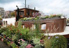 fantastic gardening on a houseboat!