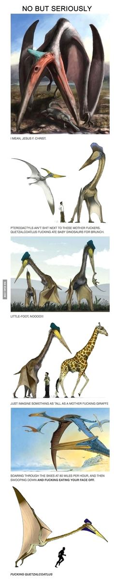 Quetzalcoatlus. Badass. - We should be seriously glad that certain species are extinct, because shit.