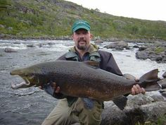 trout fishing images | Huge Atlantic Salmon caught in August at the Varzina river, Kola ...